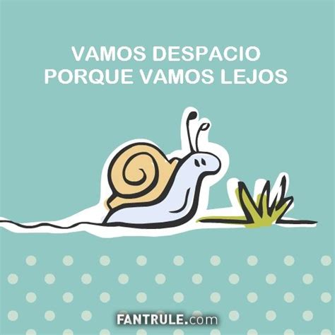 imagenes con frases para wasap best 25 perfil de whatsapp ideas on pinterest imagen