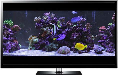 watch online fish tank 2009 full hd movie official trailer aquarium video downloads for hd tv and aquarium screensaver videos