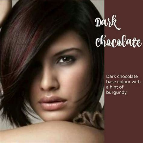 chocolate colored hair 17 best ideas about chocolate hair colors on