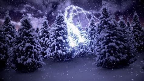 magischer weihnachtsbaum loon kommunikation magische weihnachten