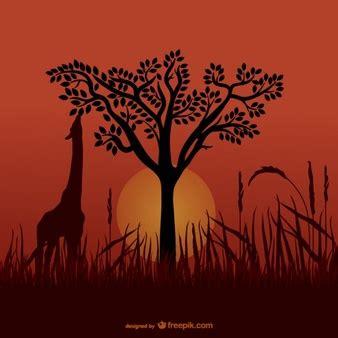imagenes de jirafas blanco y negro savane vecteurs et photos gratuites