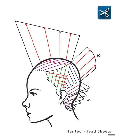 cutting diagrams for a shag cut 63 best images about diagram haircut on pinterest a