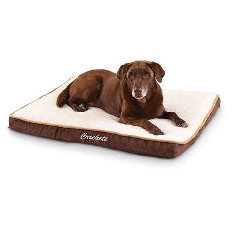 memory foam pet bed memory foam 30x40 quot ortho pet bed 236486 kennels beds at sportsman s guide