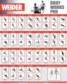 weider pro  exercise chart healthy life gym