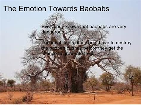 what do trees symbolize baobab symbolism presentation