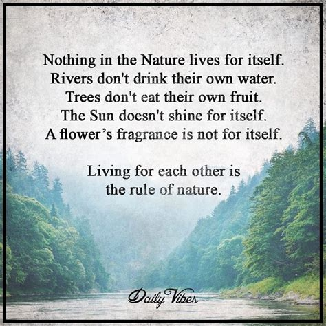 quotes about nature 15 best ideas about nature quotes on