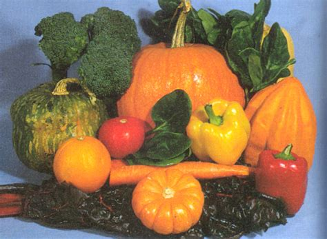 fruits n vegetables rich in vitamin d healthy habits2