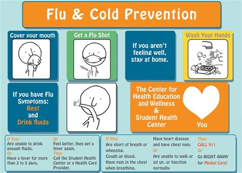 7 Tips On Preventing The Common Cold by Cold Flu Prevention Center For Health Education Wellness