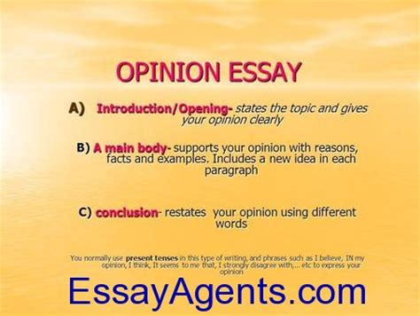 Opinion Essay Structure by How To Write An Opinion Essay Sle Opinion Paper The Best Essay Writing Service