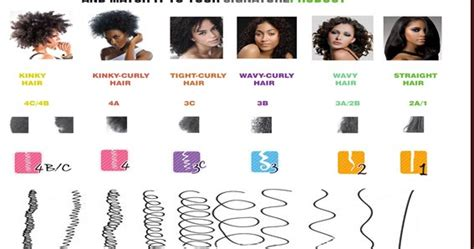 Finding Your Hair Type by All About Healthy Hair What Is The Best Carrier And