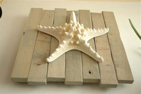 starfish home decor wall decor best 20 large starfish wall decor large