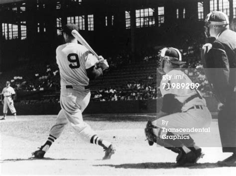 ted williams swing ted williams swing www pixshark com images galleries
