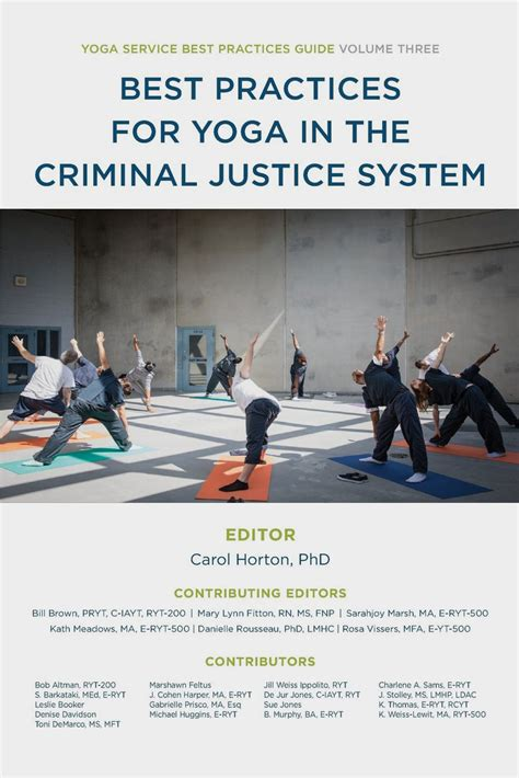 best practices for in the criminal justice system service best practice guides volume 3 books best practices book series service council