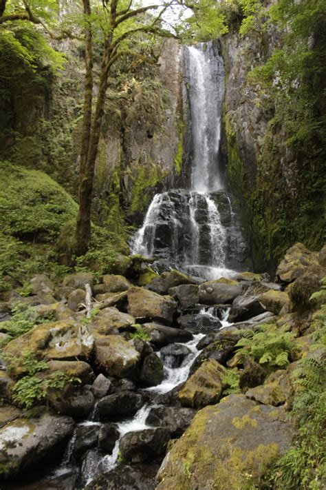hiking the seclusive siuslaw national forest kentucky
