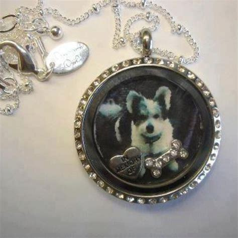 Origami Owl Locket Charms - 38 best images about family origami owl jewelry on