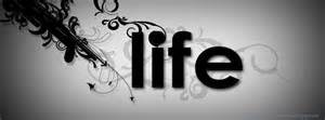 la vie est