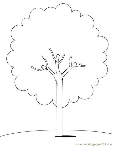 tree pattern without leaves coloring page tree free coloring pages of bare tree outline