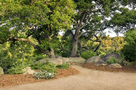 Sb Botanic Garden Santa Barbara Botanic Garden Atta Associates Santa Barbara California