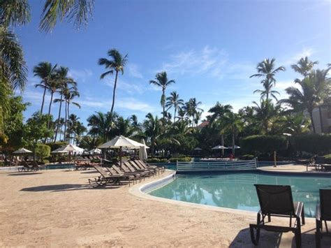 dreams palm beach resort 301 moved permanently