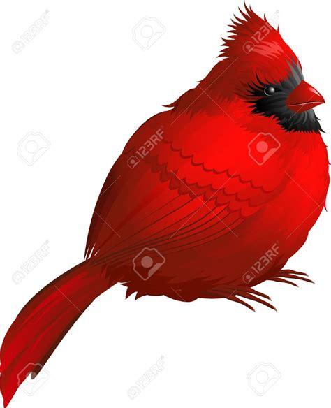 cardinal clip cardinal bird clip cliparts