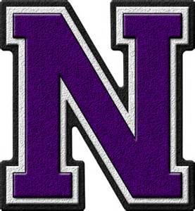 presentation alphabets purple varsity letter n