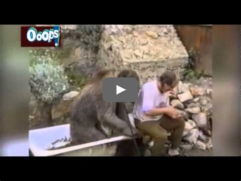 hot and funny videos youtube ooops youtube rewind 2014 top funny videos clipscat