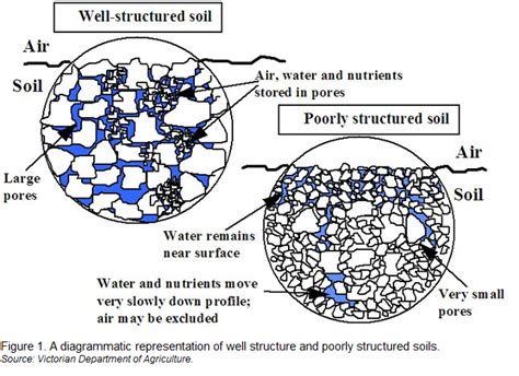 pattern formation particle aggregation soil structure and the physical fertility of soil future