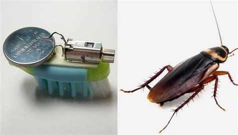 cara membuat cosplay robot mudahnya cara membuat robot dari sikat gigi paling murah