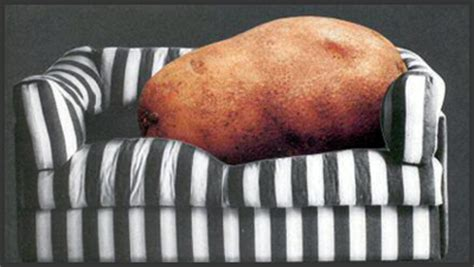 fat couch potato sedentary lifestyle is a health risk sci unison fitness inc