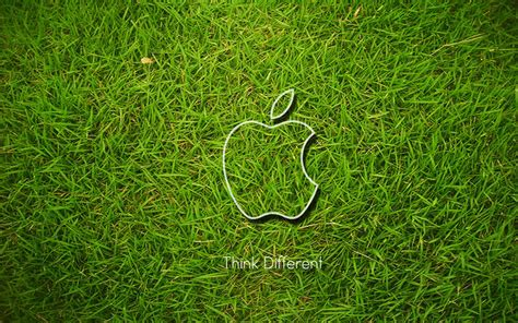 apple wallpaper grass pin apple wallpapers grass official leopard computer cache