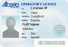 driver license renewal service alberta drayden insurance ltd