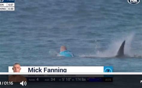 2015 beach shark attack breaking news triple world surfing chion mick fanning