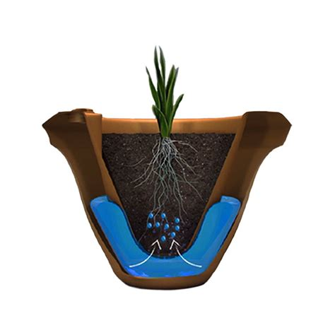 self watering plant pots planters amusing self watering plant pots self watering