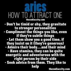1000 images about aries