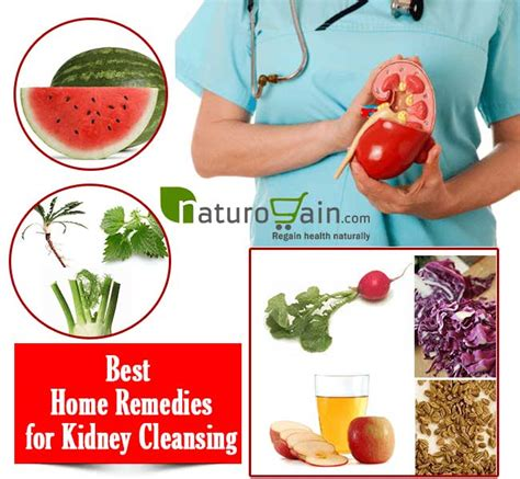 Home Remedy To Detox Kidney by Best Home Remedies For Kidney Cleansing To Improve Kidney