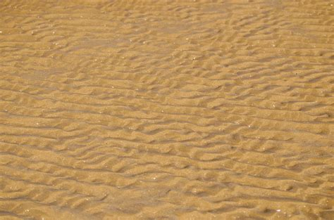 Of Sand by Sand Background Free Stock Photo Domain Pictures