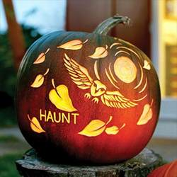 Cool Pumpkin Outlines by My Owl Barn Free Pumpkin Carving Owl Templates