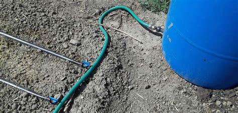 irrigazione giardino fai da te realizzare un impianto di irrigazione fai da te