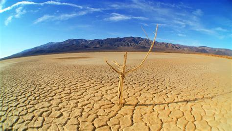 Barren Landscape Definition Drought Disaster Stock Footage 3675698