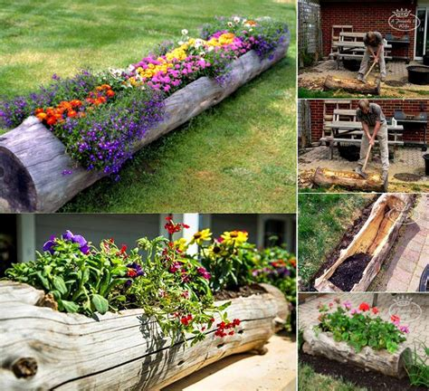Tree Log Flower Planter by Diy Hollowed Tree Wood Planters