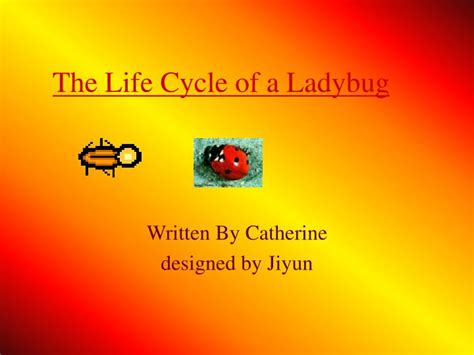 ppt the life cycle of ladybugs powerpoint presentation ppt the life cycle of a ladybug powerpoint presentation