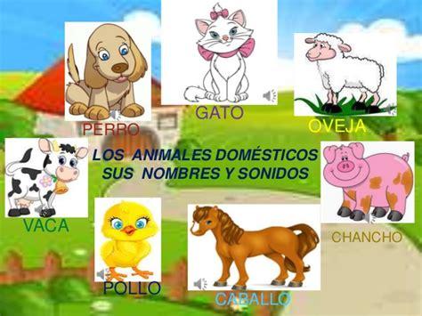imagenes de animales y sus derivados la vaca losanimale domesticos y sus derivados