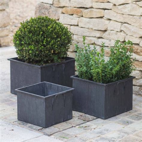 square planters all things brighton beautiful