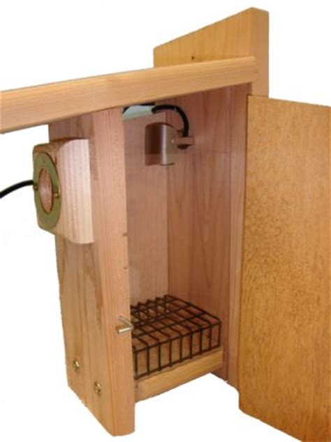 bluebird houses for sale many popular styles