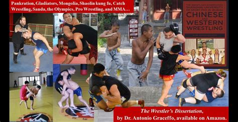 the wrestler s dissertation wushu and western