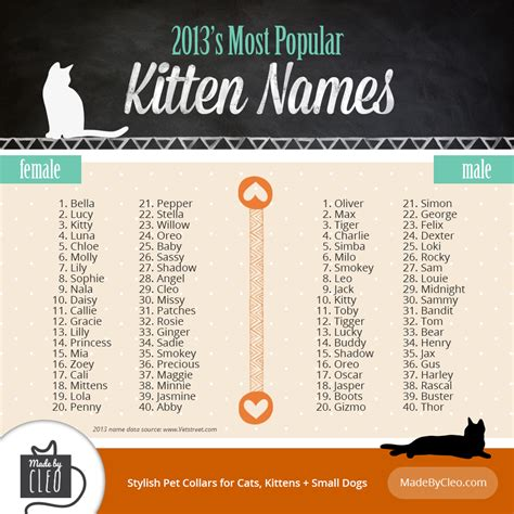 infographic most popular kitten names 2013 shows top 40 names for male female kittens
