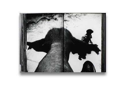 daido moriyama the world 8857200612 photo eye bookstore daido moriyama the world through my eyes photo books