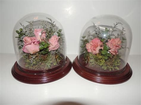 Dome Flowers 10 best glass domes and displays floral preservation
