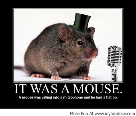 Mouse Memes - photo