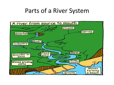 sections of a river water and water pollution ppt video online download